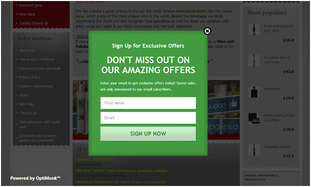 exit intent popup to collect email signups