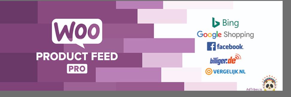WooCommerce product feed pro