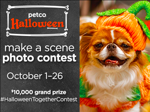 Halloween advertising idea - Photo contest to drive traffic