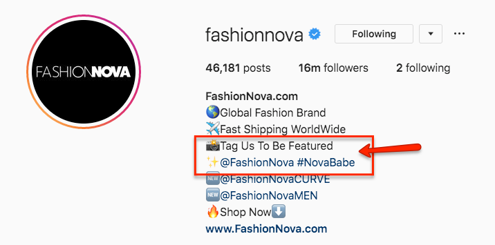 How Fashion Nova Beats Out Dior And Gucci To Become The Most Googled Fashion Brand In The World Beeketing Blog